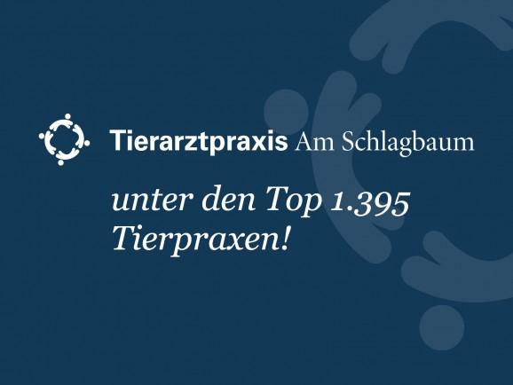 Focus: wir gehören zu den TOP 1.395 Tierarztpraxen!
